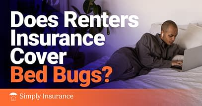 Does Renters Insurance Cover Bed Bugs In 2020